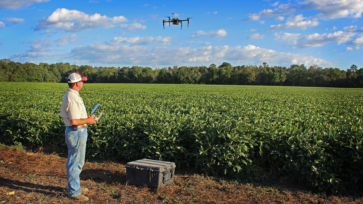 Man with drone flying over farm field
